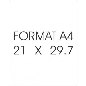 HOD119 - DECAL FILM - WHITE - 1 SHEET FOR INKJET PRINTER